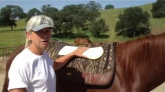 Smart Pad testimonial video from 2* Parelli Professional, Jody Ellis Second segment