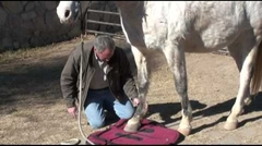 Would You Do this With Your Saddle Pad?